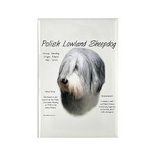 Polish Lowland Sheepdog Rectangle Magnet