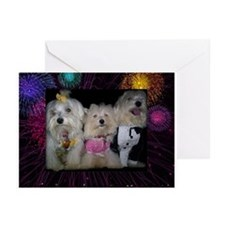 Maltese Holiday Cards Greeting Cards (Pk of 10