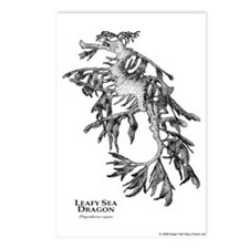 Leafy Sea Dragon Postcards (Package of 8)