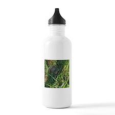 Hidden Turtle Water Bottle