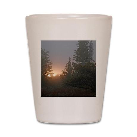 Misty mornings Shot Glass