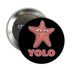 "YOLO 2.25"" Button"