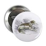 Boar Hound Dog Button