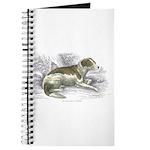 Boar Hound Dog Journal