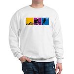 TRIATHLON USA Sweatshirt