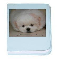 Pekingese Puppy baby blanket