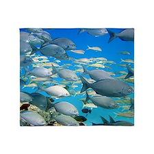 Gray Chub Fish Throw Blanket