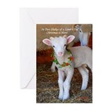 Lamb/Wreath Christmas Cards (Pk of 20)