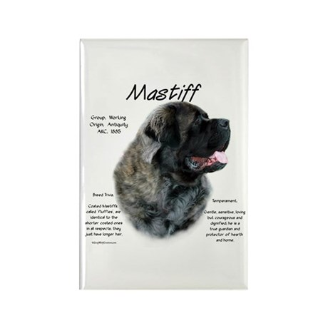 Brindle Fluffy Mastiff Rectangle Magnet