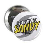 "I Survived SANDY 2.25"" Button"