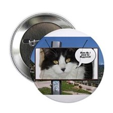 "Political Cat Humor 2.25"" Button (100 pack)"
