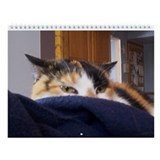 Calico Kitty Cat Wall Calendar