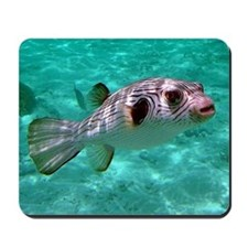 Striped Puffer Fish Mousepad