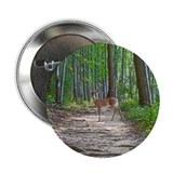 "Beautiful doe in forest 2.25"" Button (100 pack)"