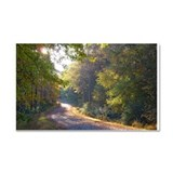 Park trail in September Car Magnet 20 x 12