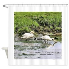 Swan on Pleasant Bay Shower Curtain