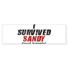 I Survived Sandy (just barely) Bumper Sticker