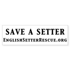 Save a Setter Bumper Sticker (white)