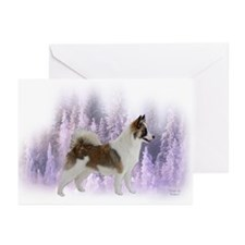 Designs by Eclipse Greeting Cards (Pk of 10)