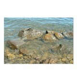 Cute Waters Postcards (Package of 8)