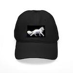 Arctic Fox 3 Black Cap