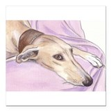 "Lurcher on sofa Square Car Magnet 3"" x 3"""