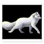 """Arctic Fox 3 Square Car Magnet 3"""" x 3"""""""