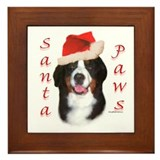 Berner Paws Framed Tile