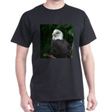 eagle Black T-Shirt