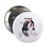 Havanese Button
