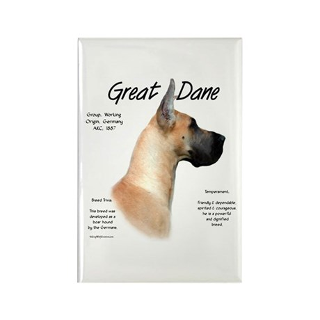 Fawn Great Dane Rectangle Magnet