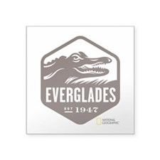 "Everglades Square Sticker 3"" x 3"""