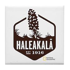 Haleakala Tile Coaster