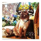 Tonkinese under Tiffany Lamp Square Car Magnet 3""