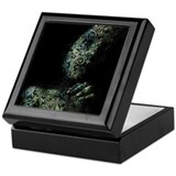 Praying To A Green Mother Keepsake Box