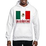 Illegal Immigration Hooded Sweatshirt