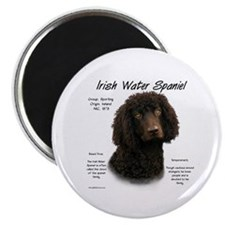 Irish Water Spaniel Magnet