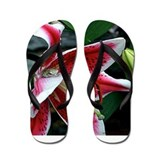 Lazy Lilly Days Flip Flops