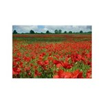 Poppy Fields Rectangle Magnet