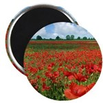 Poppy Fields Magnet
