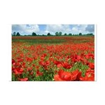 Poppy Fields Mini Poster Print