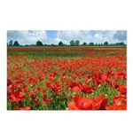 Poppy Fields Postcards (Package of 8)