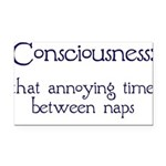 Consciousness-Naps.png Rectangle Car Magnet