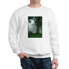 Funny National cemetery Sweatshirt