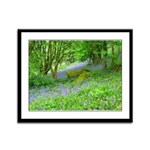 Bluebell Woods.jpg Framed Panel Print