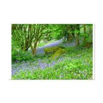 Bluebell Woods.jpg Mini Poster Print
