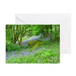 Bluebell Woods.jpg Greeting Cards (Pk of 10)