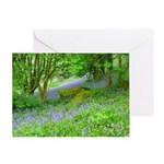 Bluebell Woods.jpg Greeting Card