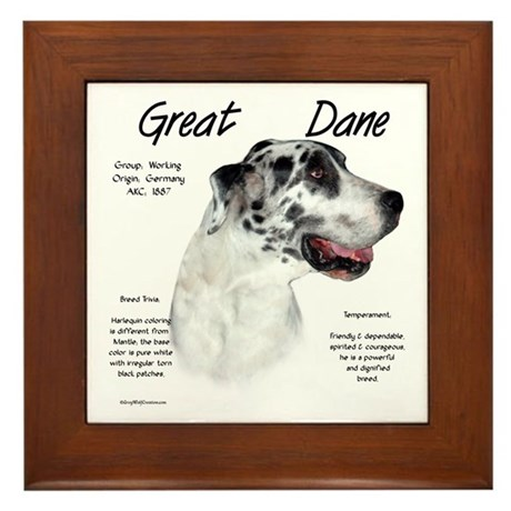 Harlequin Great Dane Framed Tile