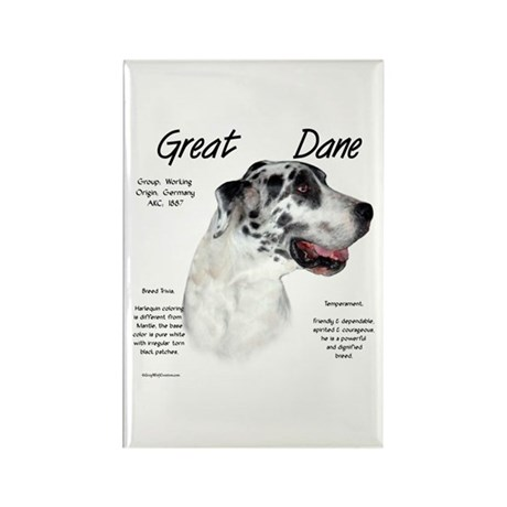 Harlequin Great Dane Rectangle Magnet